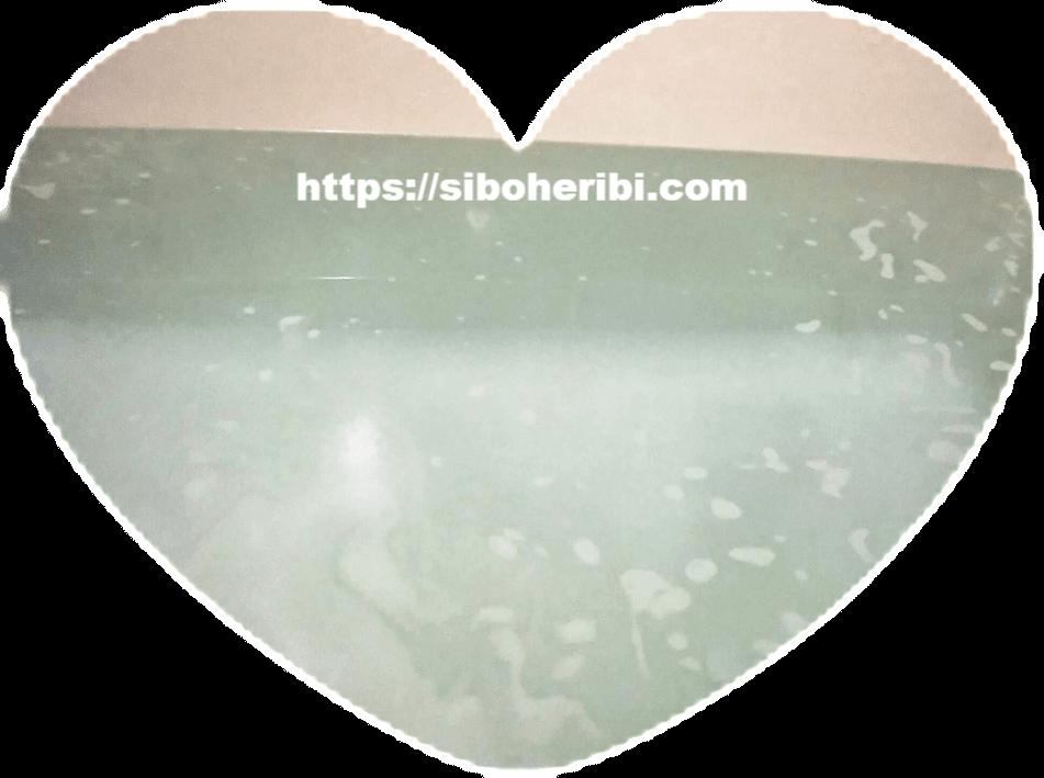 薬用ホットタブ重炭酸湯のお風呂