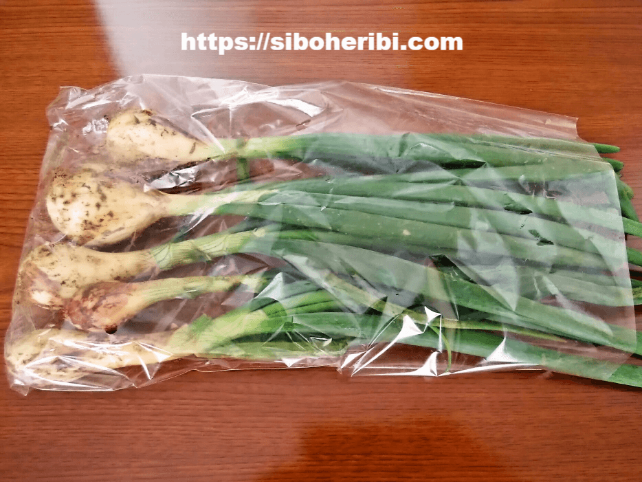 ビオマルシェの葉玉ねぎ
