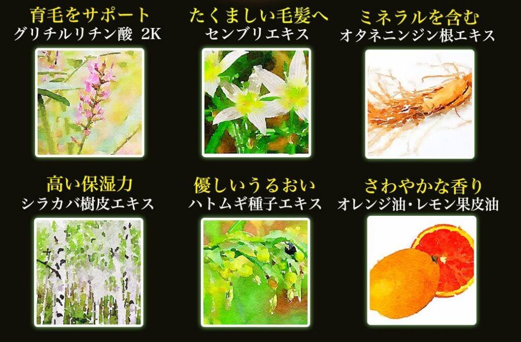 リマーユ植物成分