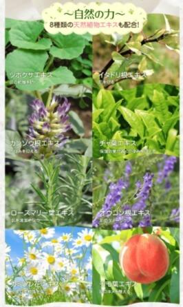 ぬくもりミルクローションの8種類の天然植物エキス