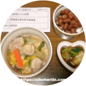 わんまいる手作りおかずセット(健幸ディナー)国産筍入り八宝菜セット