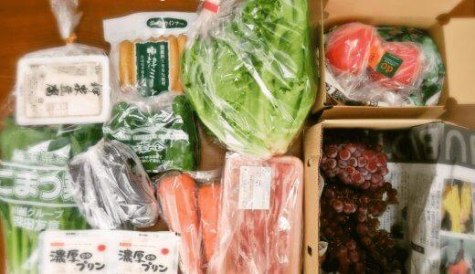 大地を守る会のお試しセットの口コミ・感想!野菜の味が濃く安全性が高い