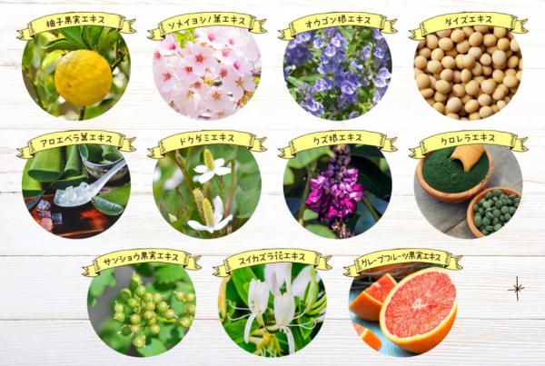 潤静は11種類の植物由来成分配合